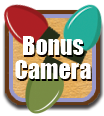 This image has an empty alt attribute; its file name is bonuscam-2.png